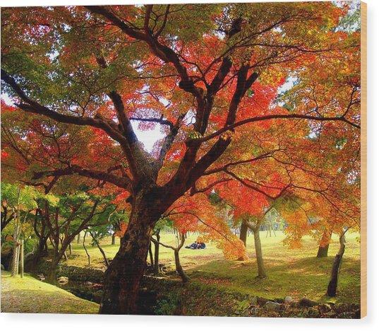 Autumn Leaves 2 Wood Print