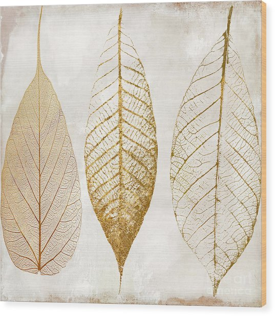 Autumn Leaves IIi Fallen Gold Wood Print