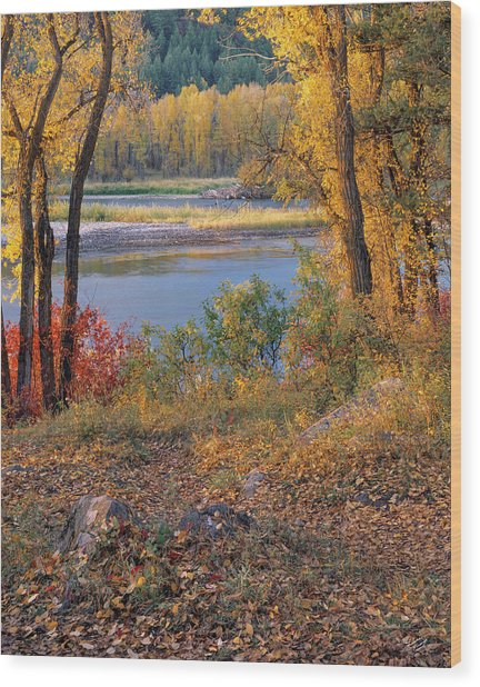 Autumn Wood Print by Leland D Howard