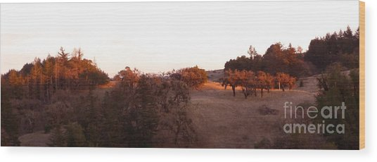 Autumn Light Wood Print by JoAnn SkyWatcher