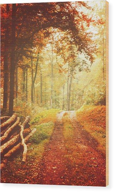 Autumn Lights Wood Print