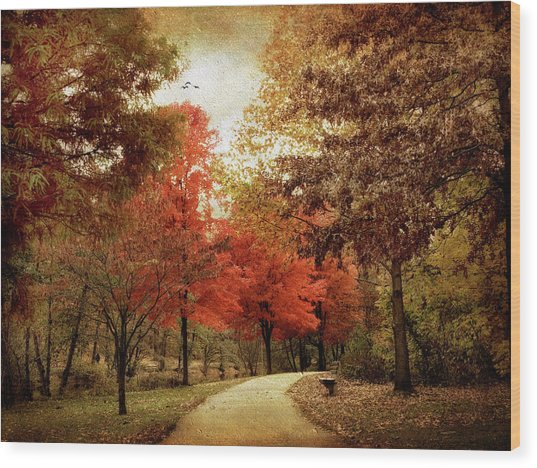 Autumn Maples Wood Print