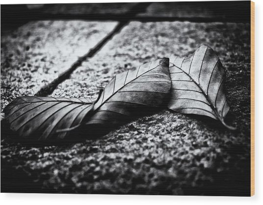 Autumn Memories  Wood Print