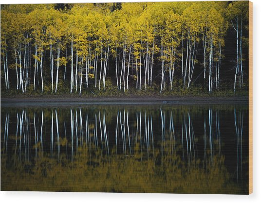 Autumn Mirror Wood Print