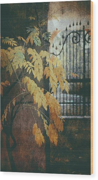 Autumn Mood Wood Print