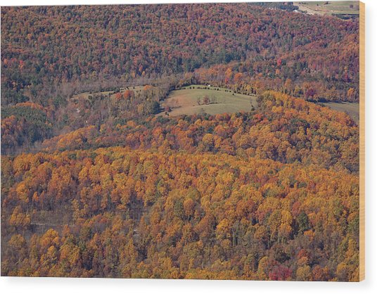 Autumn Mountain Side Wood Print