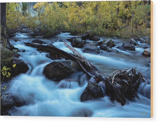 Wood Print featuring the photograph Autumn On Bishop Creek by Stuart Gordon