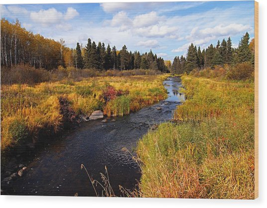 Autumn On Jackfish Creek Wood Print