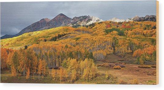 Wood Print featuring the photograph Autumn On Kebler Pass by Stuart Gordon