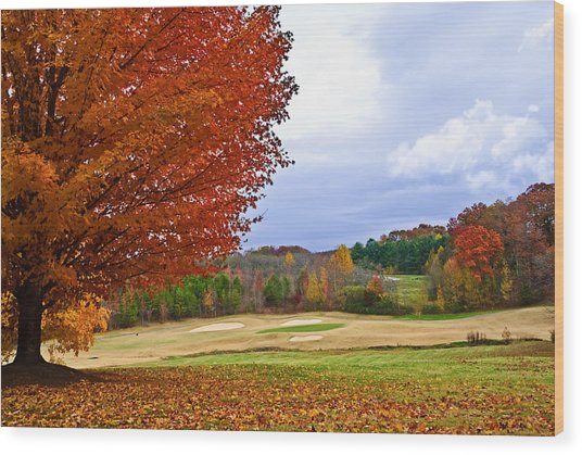 Autumn On The Golf Course Wood Print
