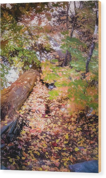 Autumn On The Mountain Wood Print