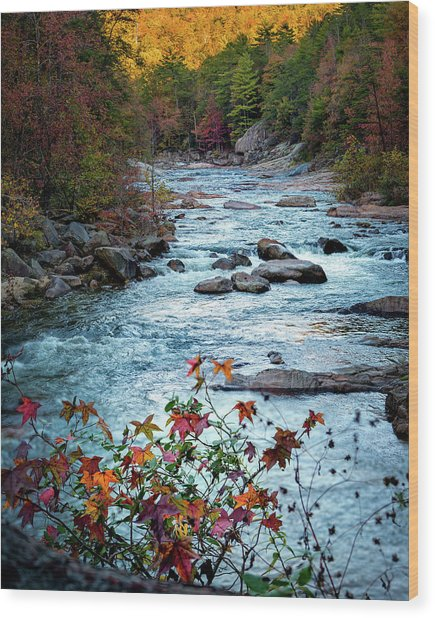 Autumn On Wilson Creek Wood Print