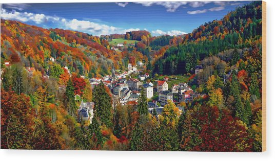 Autumn Panorama Wood Print