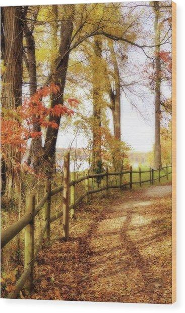 Autumn Pathway Wood Print