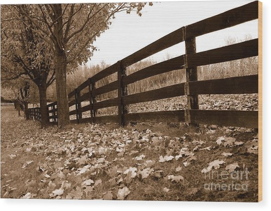 Autumn Perspective Wood Print