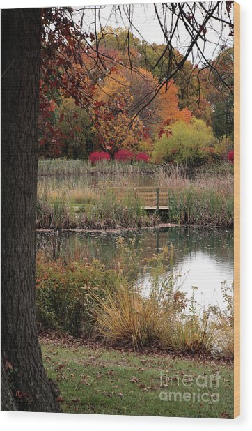 Autumn Pond In Maryland Wood Print