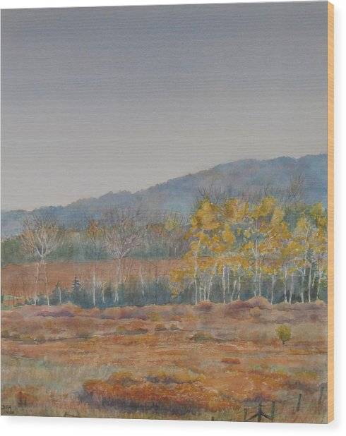 Autumn Poplars Wood Print by Debbie Homewood