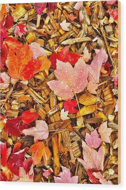 Autumn Potpourri Wood Print