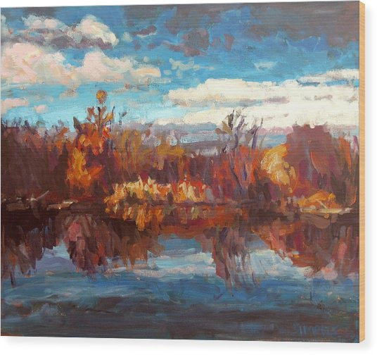 Autumn Reflection Wood Print by Brian Simons