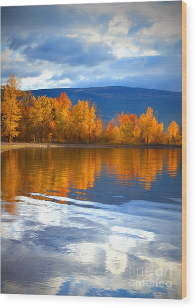 Autumn Reflections At Sunoka Wood Print