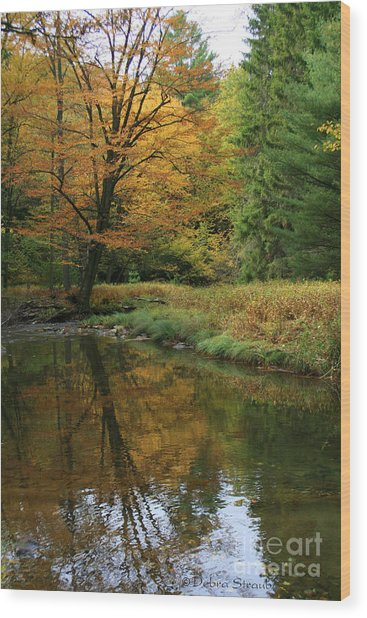 Autumn Reflections Wood Print by Debra Straub