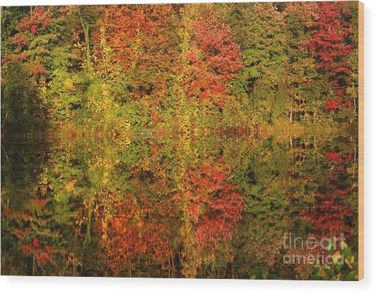 Autumn Reflections In A Pond Wood Print