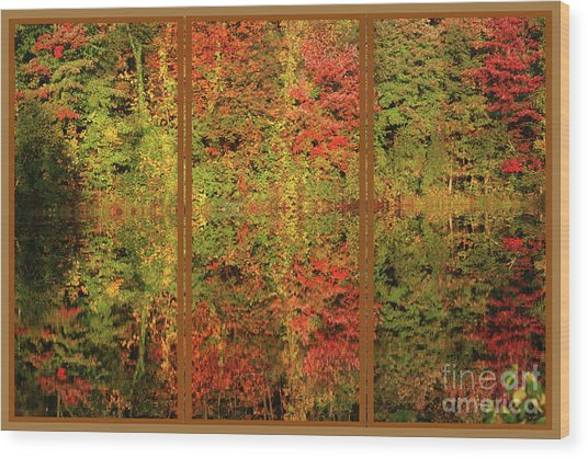 Autumn Reflections In A Window Wood Print
