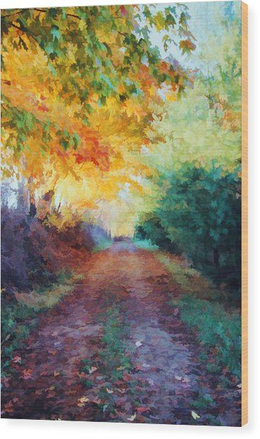 Autumn Road Wood Print