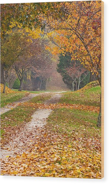 Autumn Road Wood Print by Stephen Sisk