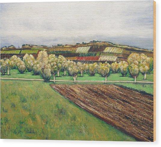 Autumn Road Wood Print by Vladimir Kezerashvili