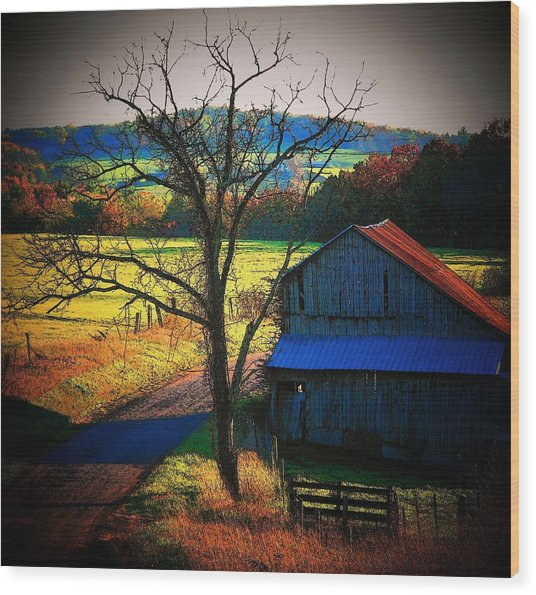Autumn Romance Wood Print by Joyce Kimble Smith