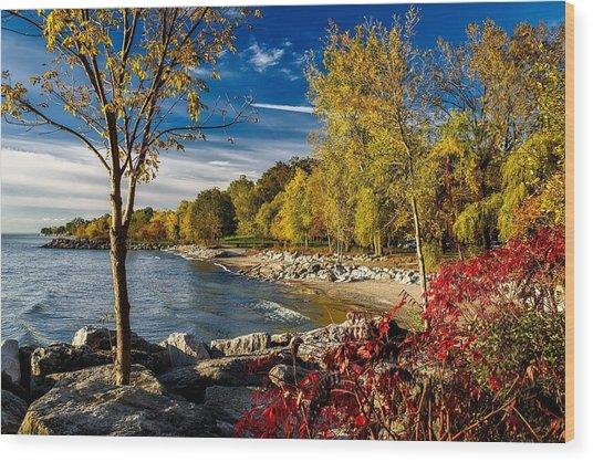 Autumn Scene Lake Ontario Canada Wood Print