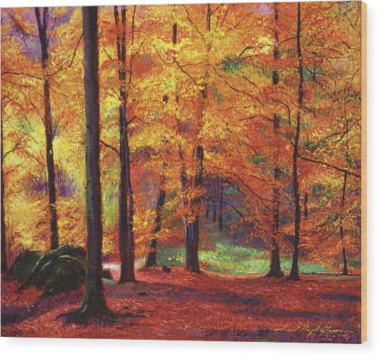 Autumn Serenity Wood Print