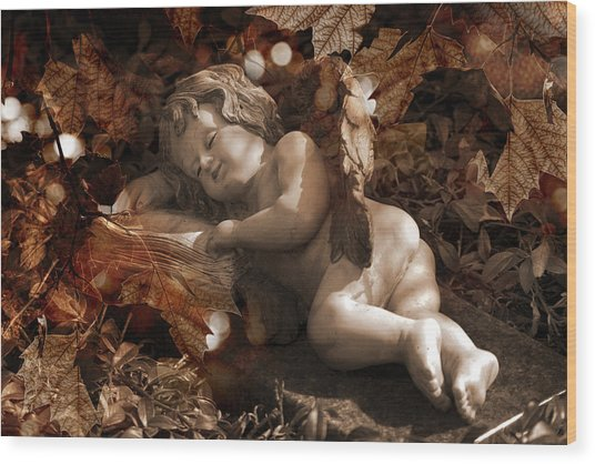Autumn Sleep Wood Print