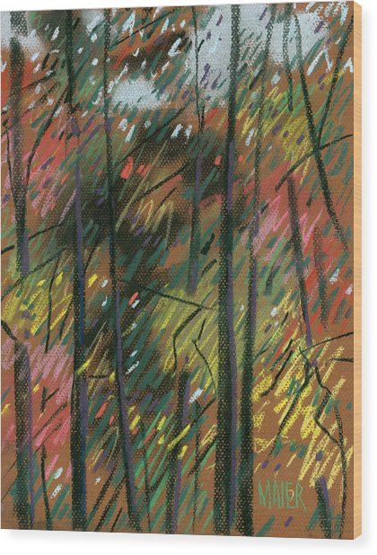 Autumn Splendor Wood Print by Donald Maier