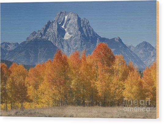 Autumn Splendor In Grand Teton Wood Print