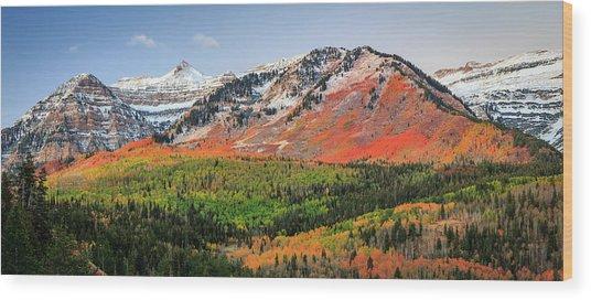 Autumn Splendor In The Ufo Bowls. Wood Print
