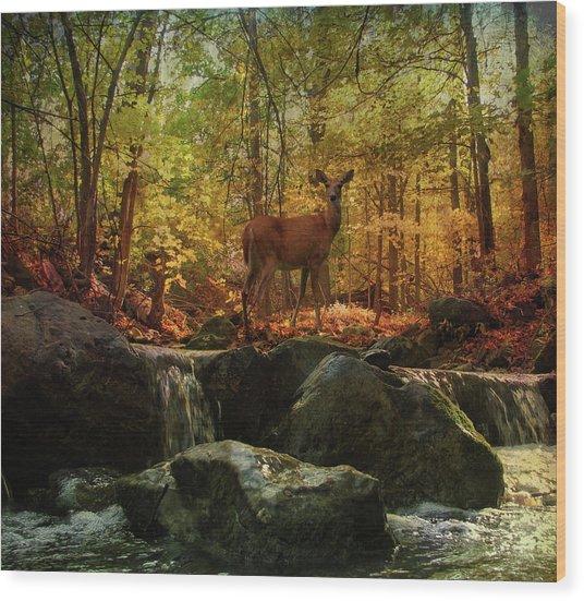 Autumn Splendor Wood Print by Kathleen Holley