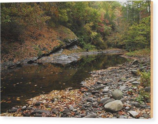 Autumn Stream Wood Print by James Elam