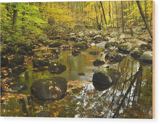 Autumn Stream Reflections Wood Print by Stephen  Vecchiotti
