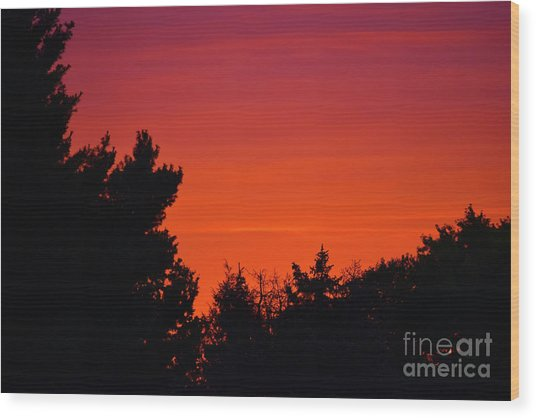 Wood Print featuring the photograph Autumn Sunrise by Patti Whitten