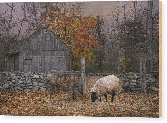 Autumn Sweater Wood Print