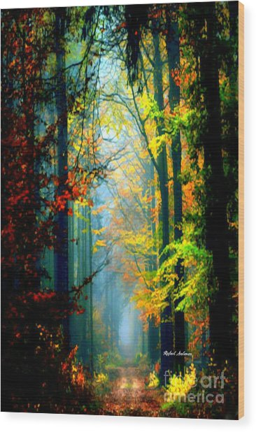 Autumn Trails In Georgia Wood Print
