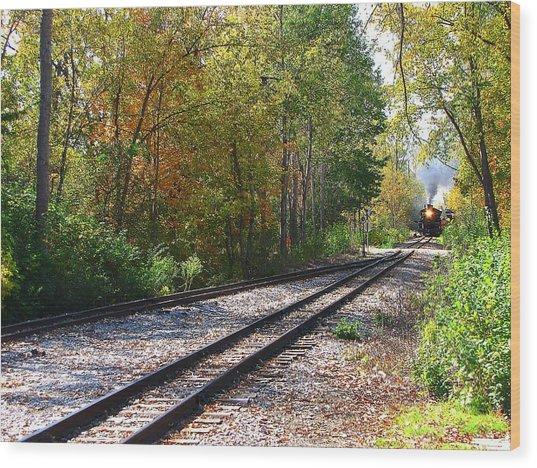 Autumn Train Wood Print