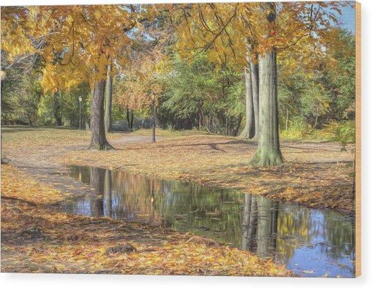 Autumn Tranquility Wood Print by Zev Steinhardt