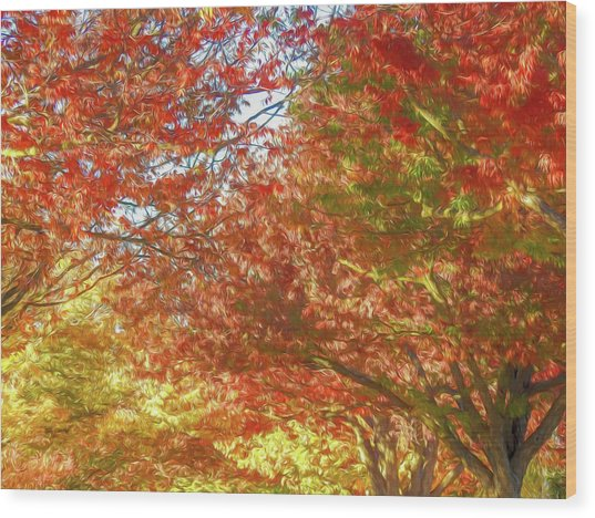 Autumn Trees Digital Watercolor Wood Print