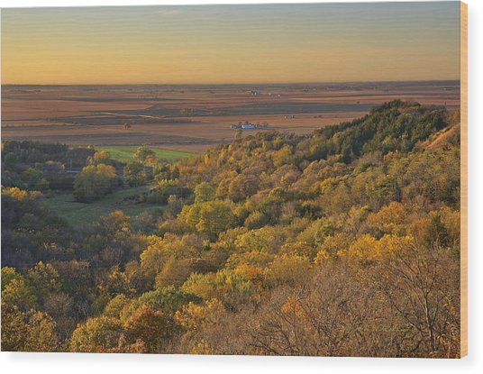 Autumn View At Waubonsie State Park Wood Print
