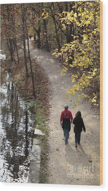 Autumn Walk On The C And O Canal Towpath With Oil Painting Effect Wood Print