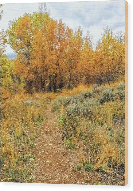 Autumn Walk Photo Wood Print