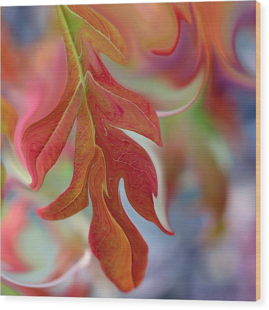 Autumnal Aria Wood Print by Suzy Freeborg